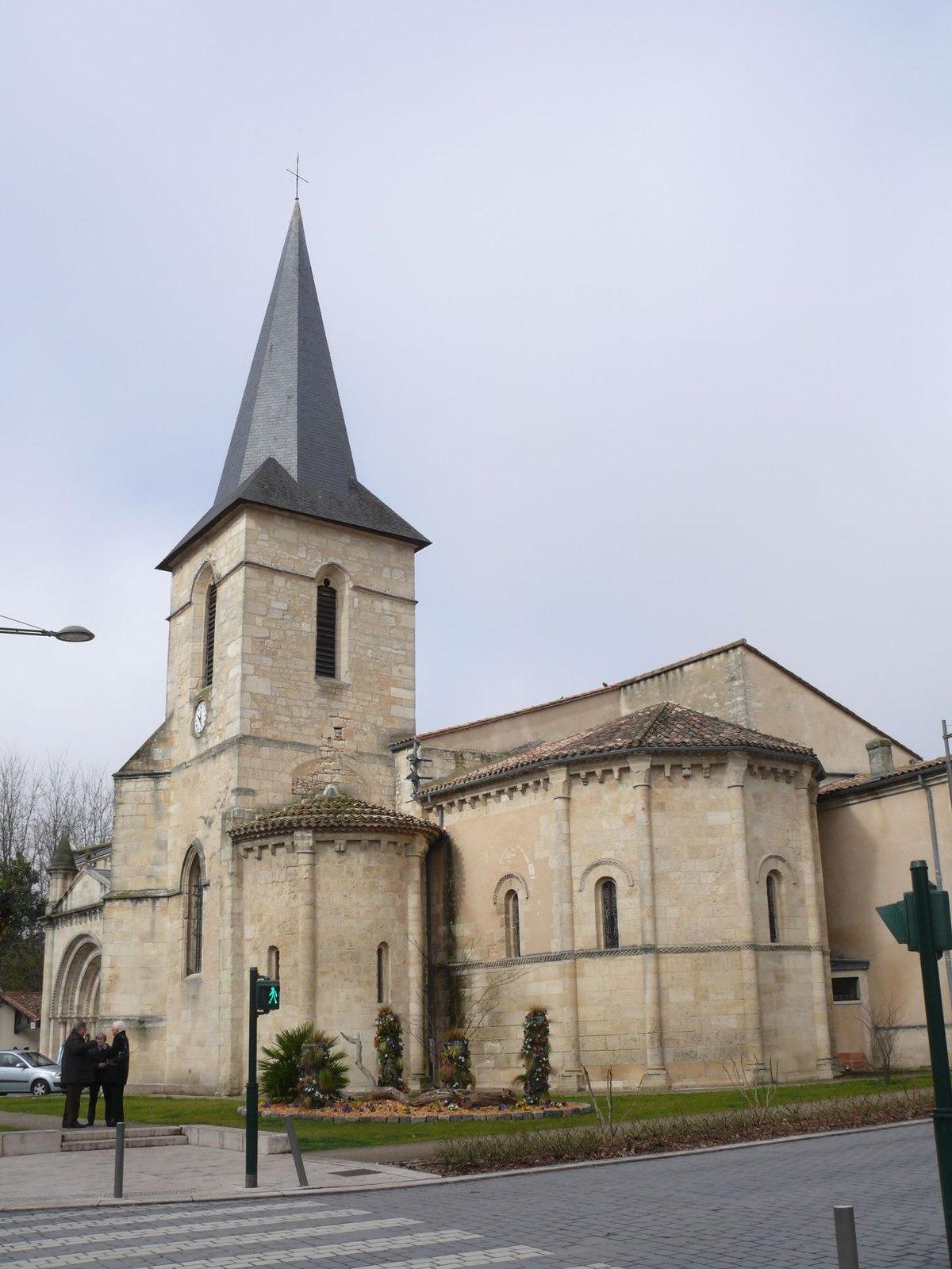 Chat saint raphael