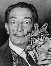 Sur une photographie en noir et blanc, Salvador Dali avec de gros yeux tenant un ocelot et le pommeau de sa canne