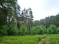 Samokov, Bulgaria - panoramio (196).jpg