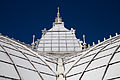San Francisco Conservatory of Flowers-46.jpg