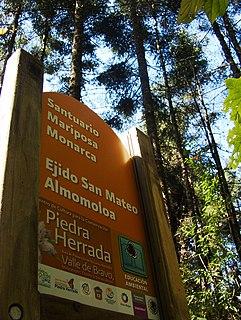 Monarch Butterfly Biosphere Reserve biosphere reserve