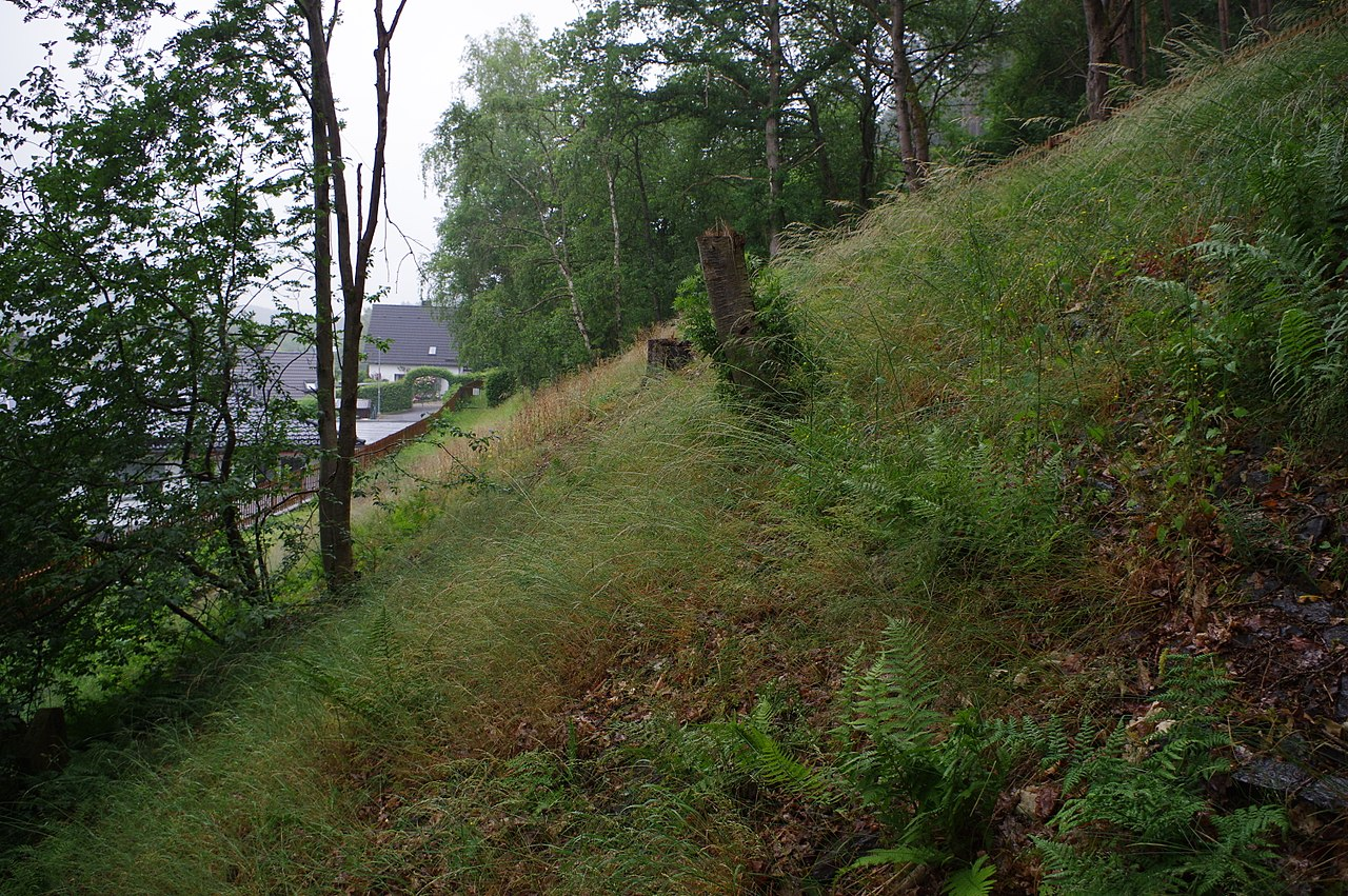 Schleiden, Jüdischer Friedhof, Blick nach Norden zum Eingang.jpg