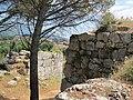 Scorcio di Norba - panoramio.jpg