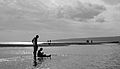Seaside Silhouettes (Imagicity 298).jpg