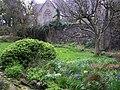 Secret Garden, Omagh - geograph.org.uk - 733488.jpg