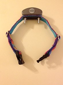 Electric Shock Collars For Dogs Illegal