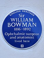 Sir WILLIAM BOWMAN 1816-1892 Ophthalmic surgeon and anatomist lived here.jpg