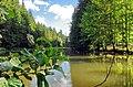 Slavkovský les rybníček nad Velkou Libavou.jpg