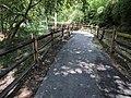 Sligo Creek Trail Kemp Mill 25.jpg