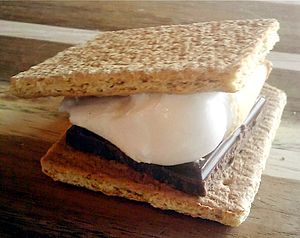A picture of a Smores treat.