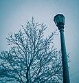 Snowy Stevens Square (22071307504).jpg