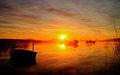 Sobre los humedales cada amanecer es unico.jpg