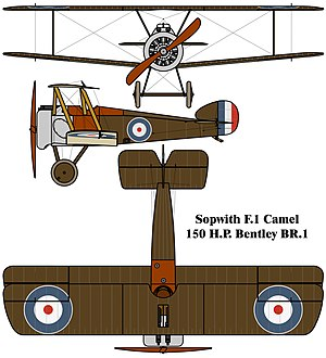 Orthographically projected diagram of the Sopwith camel.