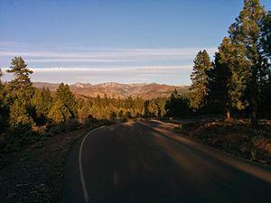 Tahoe National Forest - Southwest of Boca Reservoir on a Spring evening