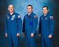 Soyuz TMA-20M official crew portrait.jpg