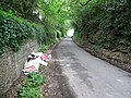Springetts Lane - geograph.org.uk - 1389389.jpg