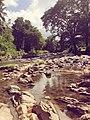Sri Lanka Kandy.jpg