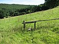 St Briavels - Stile on Slade Bottom footpath - geograph.org.uk - 520170.jpg
