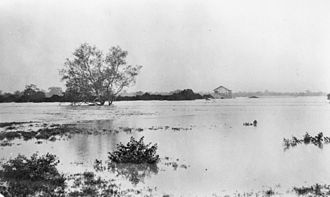 Flinders River - Flooding of the Flinders River at Hughenden, January 1917