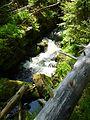 Steinbach, Nationalpark Bayerischer Wald.jpg