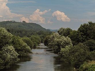 Wiese - Die Wiese near Steinen