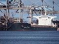 Stella Nora (ship, 2016) IMO 9750983 EECV Calandkanaal pic4.JPG