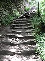 Steps on the Cinque Terre Trail (4711615301).jpg