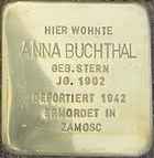 Stolperstein Siegen Buchthal Anna geb Stern.jpeg