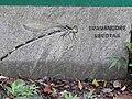 Stone carving-1-9 th hairpin bend-ponmudi-kerala-India.jpg
