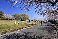 Suhara Park 01, Igaya-cho Kariya 2020.jpg