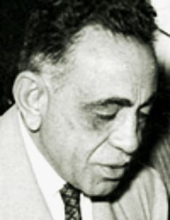 Egyptian lawyer