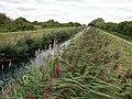 Swaffham Bulbeck Lode - geograph.org.uk - 1461208.jpg