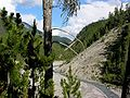 Swiss National Park 038.JPG