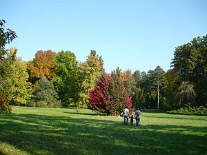 Békés County - Image: Szarvas arborétum 4