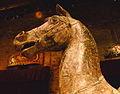 Tête de cheval - sculpture pour manège.JPG