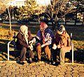 Të Moshuarat duke biseduar - Ulpianë - Prishtinë.jpg