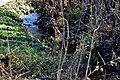 Techelsberg Pavor Muehlbach 09112011 012.jpg