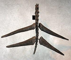 Thagomizer - Thagomizer on mounted Stegosaurus tail