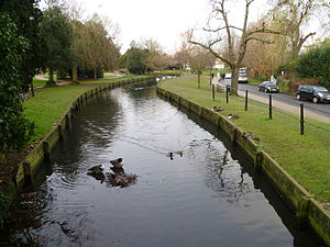 Enfield Town - The New River, Enfield park looking north.