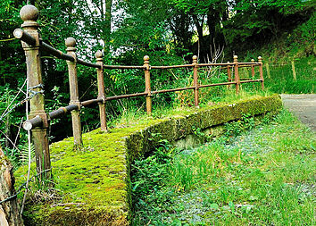 The Old Railings - geograph.org.uk - 977999.jpg