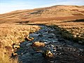 The River Caldew - geograph.org.uk - 1063034.jpg
