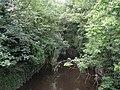The River Crane - geograph.org.uk - 911824.jpg