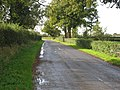 The Road To Thuxton - geograph.org.uk - 276570.jpg