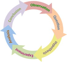 6 Main Characteristics of a Usable Hypotheses | Social Research
