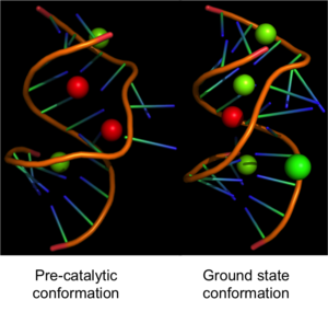 Leadzyme - Image: The crystal structures of leadzyme