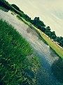 The lake of Tonga.jpg