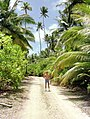 The road to the old plantation, on the eastern side of Diego Garcia.jpg