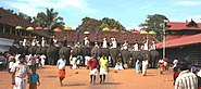 Thrippunithura-Elephants4 crop