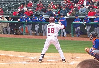 2010 Arkansas Razorbacks baseball team - Carver attended Fayetteville High School.