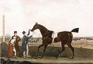 Tiresias (horse) - Tiresias with jockey and trainer. Engraving by James Pollard.